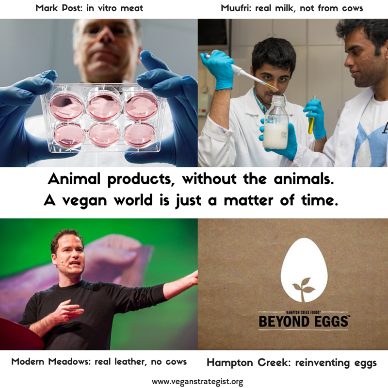 hi tech animal products (1)