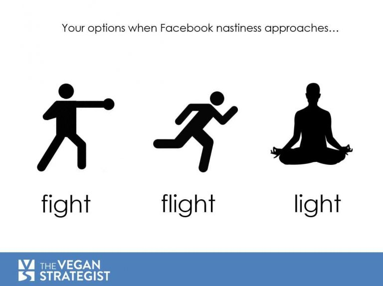 facebook light flight fight