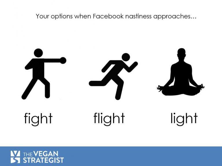 facebook light flight fight