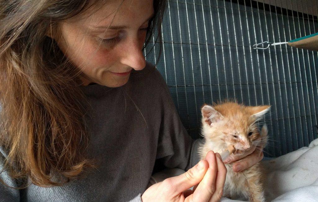 My girlfriend Melanie taking care of a sick kitten