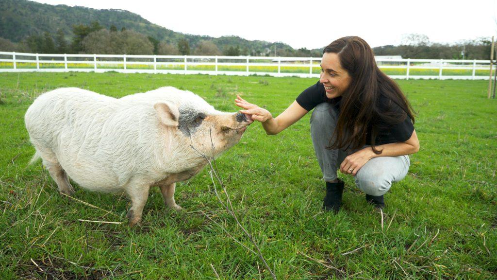 Leah Garcés befriending a pig